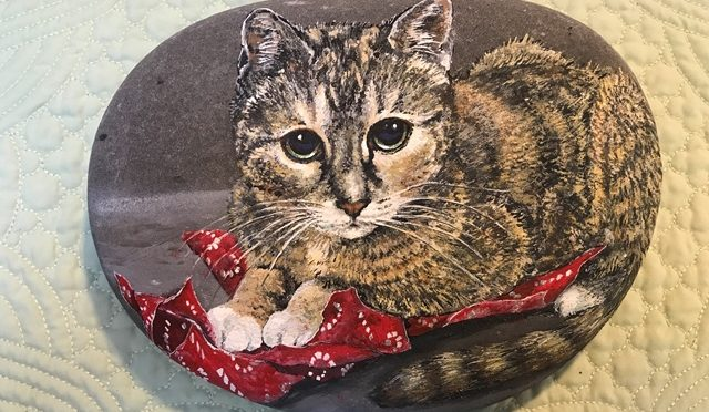 Cat With Red Wrapping Paper on a stone